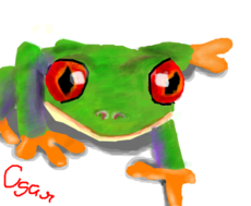 Frog *0*