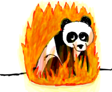 Panda Flamejante p/ Honey