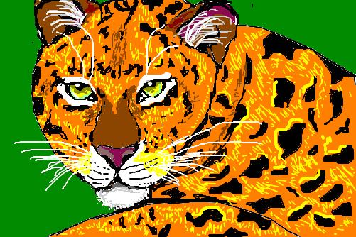 onça pintada - Desenho de anderson_desenho - Gartic