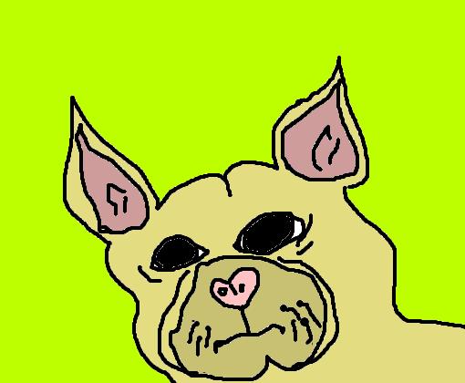bulldog francês desenho de animebits gartic