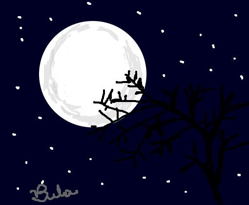 Desenho De Boa Noite: Desenho De Bela_fofa