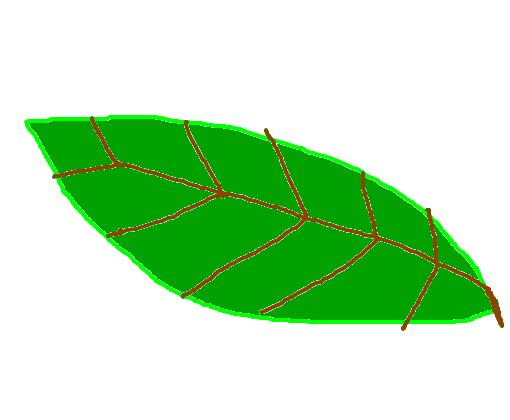 Folha De árvore Desenho De Brennobrenado Gartic