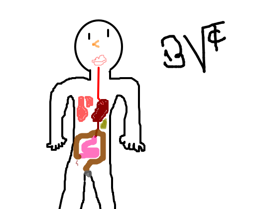 sistema digestório desenho de bv tc gartic