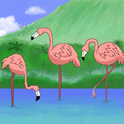 Flamingos Desenho De Cassi0645 Gartic