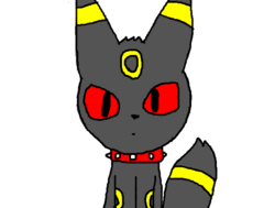 p/umbreon_poke_boy