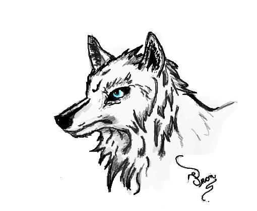 Lobo Solitario Desenho De Franloky Gartic