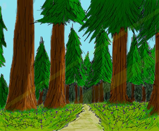 floresta - desenho de hanno