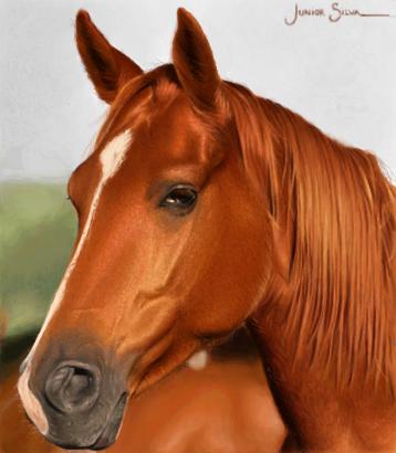 Cavalo p/ Isa_chatinha - Desenho de juniorbankai - Gartic