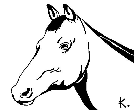 cavalo desenho de killenure gartic