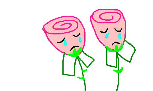 choram-as-rosas.png