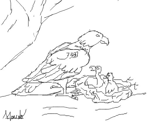 pássaro e filhotes desenho de misterteen gartic