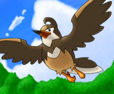 #397 Staravia (Umbreon__)