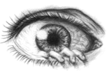 The Eye (miKka)