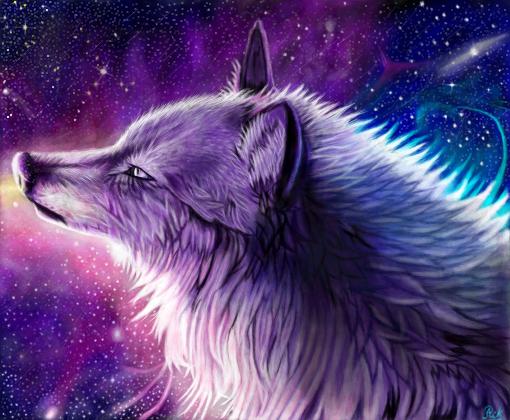 Lobo Galaxy Desenho De Rikaru12 Gartic