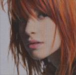 Hayley Williams pixel P/Gaku