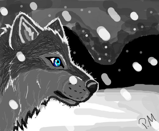 lobo da neve - Desenho...